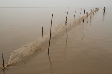 A fish trap in the shallow coastal waters of the Mekong Delta in southern Vietnam