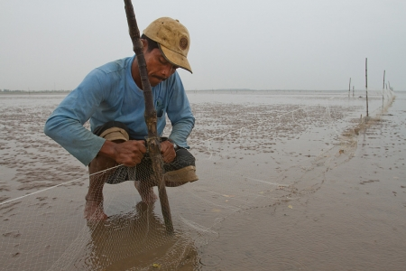A man fixes a tidal fish trap off the coast of Soc Trang, Vietnam.