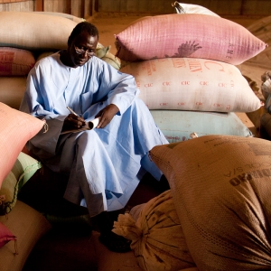 A local UN Volunteer tracks the stock in a seed bank in the Sahel-area of Senegal