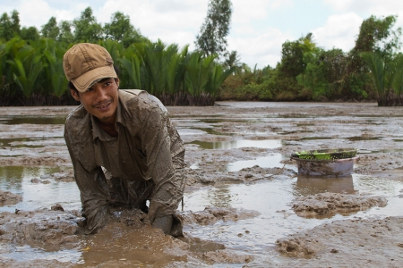 A man digs for eels in the muddy river sediment near Ca Mau in the Mekong Delta